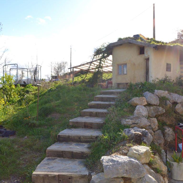 Cabin steps